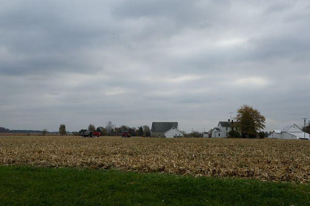 Farm-8733